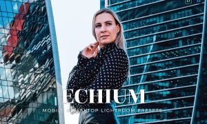 Echium Mobile and Desktop Lightroom Presets