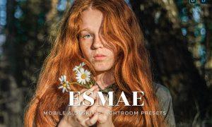Esmae Mobile and Desktop Lightroom Presets