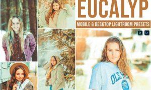 Eucalyp Mobile and Desktop Lightroom Presets