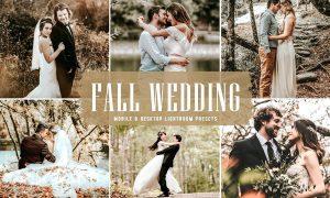 Fall Wedding Mobile & Desktop Lightroom Presets