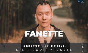 Fanette Desktop and Mobile Lightroom Preset