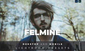 Felmine Desktop and Mobile Lightroom Preset