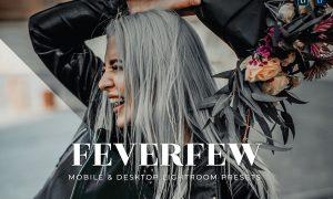 Feverfew Mobile and Desktop Lightroom Presets