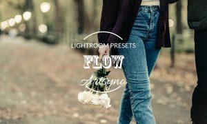 Flow Lightroom Presets Dekstop and Mobile