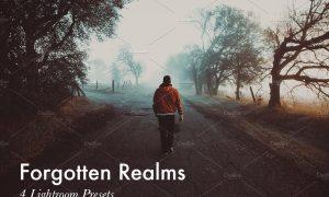 Forgotten Realms-4 Lightroom Presets 400125
