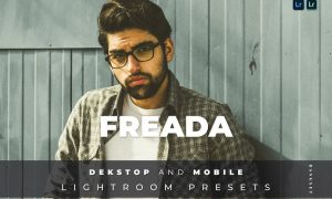 Freada Desktop and Mobile Lightroom Preset