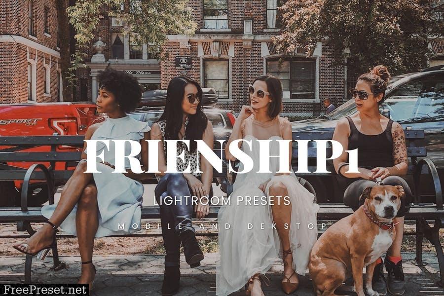 Friendship1 Lightroom Presets Dekstop and Mobile