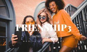 Friendship3 Lightroom Presets Dekstop and Mobile