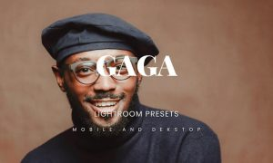 Gaga Lightroom Presets Dekstop and Mobile