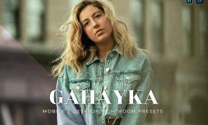 Gahayka Mobile and Desktop Lightroom Presets