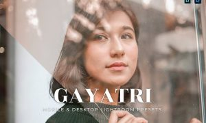 Gayatri Mobile and Desktop Lightroom Presets
