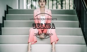 Gelisa Lightroom Presets Dekstop and Mobile