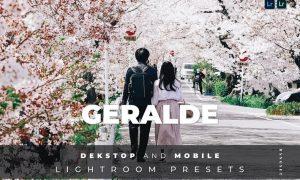 Geralde Desktop and Mobile Lightroom Preset