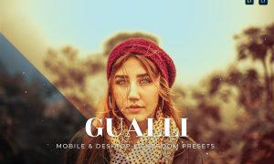 Gualli Mobile and Desktop Lightroom Presets