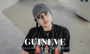 Guineve Mobile and Desktop Lightroom Presets