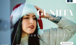 Gunjita Desktop and Mobile Lightroom Preset