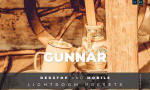 Gunnar Desktop and Mobile Lightroom Preset