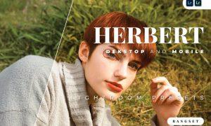 Herbert Desktop and Mobile Lightroom Preset