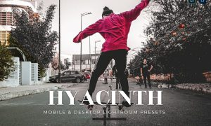 Hyacinth Mobile and Desktop Lightroom Presets