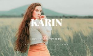 Karin Lightroom Presets Dekstop and Mobile