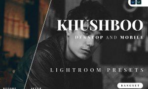 Khushboo Desktop and Mobile Lightroom Preset