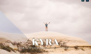 Kyra Mobile and Desktop Lightroom Presets