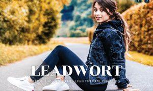 Leadwort Mobile and Desktop Lightroom Presets