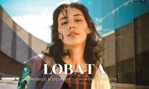 Lobata Mobile and Desktop Lightroom Presets