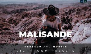 Malisande Desktop and Mobile Lightroom Preset