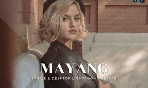 Mayang Mobile and Desktop Lightroom Presets