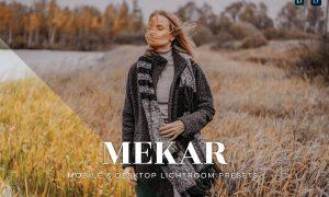 Mekar Mobile and Desktop Lightroom Presets