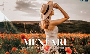 Mentari Mobile and Desktop Lightroom Presets