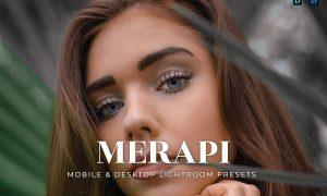 Merapi Mobile and Desktop Lightroom Presets
