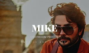 Mike Lightroom Presets Dekstop and Mobile