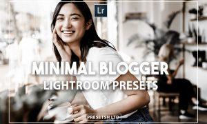 Minimal Blogger Presets