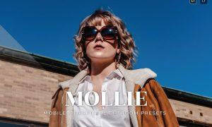 Mollie Mobile and Desktop Lightroom Presets