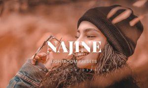 Najine Lightroom Presets Dekstop and Mobile