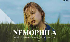 Nemophila Mobile and Desktop Lightroom Presets