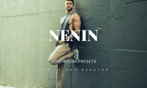 Nenin Lightroom Presets Dekstop and Mobile