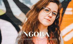 Ngoba Mobile and Desktop Lightroom Presets