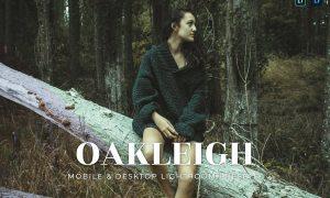 Oakleigh Mobile and Desktop Lightroom Presets