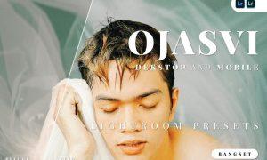 Ojasvi Desktop and Mobile Lightroom Preset