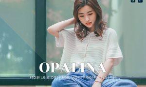 Opalina Mobile and Desktop Lightroom Presets