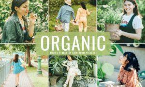 Organic Mobile & Desktop Lightroom Presets