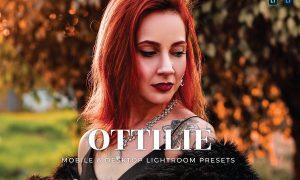 Ottilie Mobile and Desktop Lightroom Presets