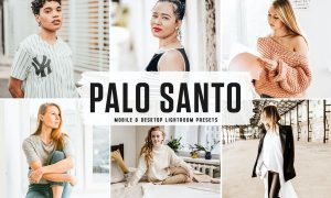 Palo Santo Mobile & Desktop Lightroom Presets