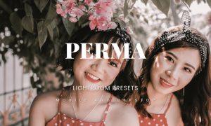 Perma Lightroom Presets Dekstop and Mobile
