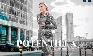 Potentilla Mobile and Desktop Lightroom Presets