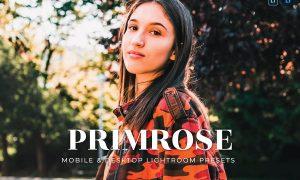 Primrose Mobile and Desktop Lightroom Presets
