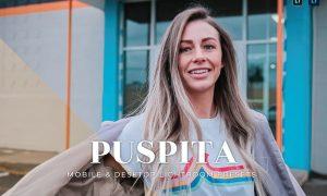 Puspita Mobile and Desktop Lightroom Presets